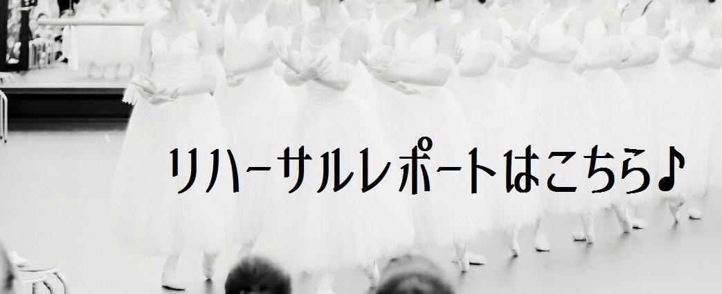 blog用_3241